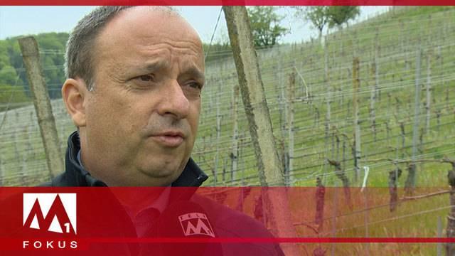 Jahrhundertfrost: Kanton Aargau hilft Bauern