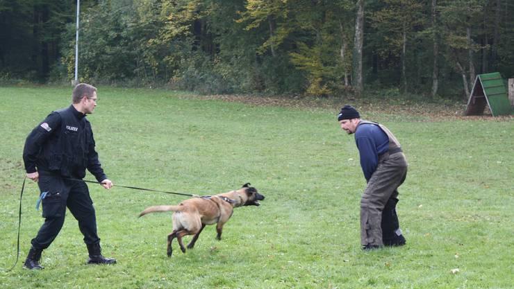 Im Training mit dem Hund.