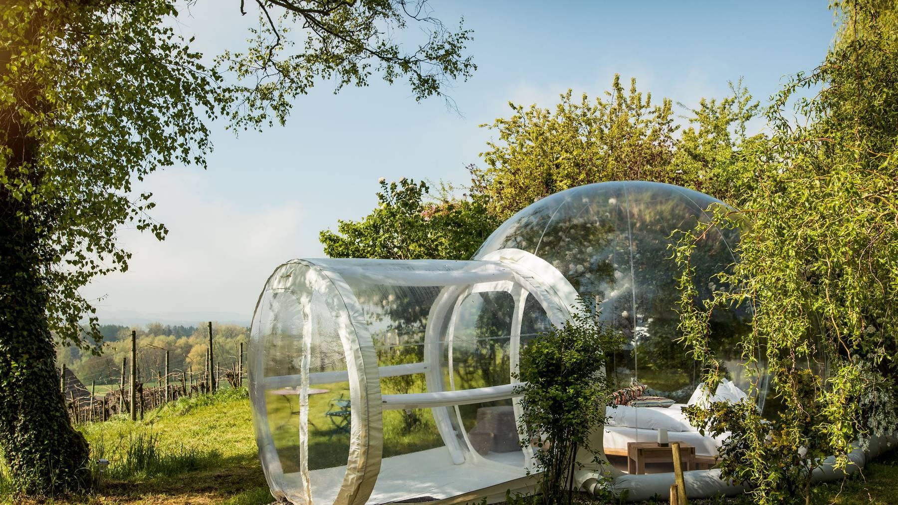 Eines der Bubble Hotels steht bei der Kartause Ittingen.