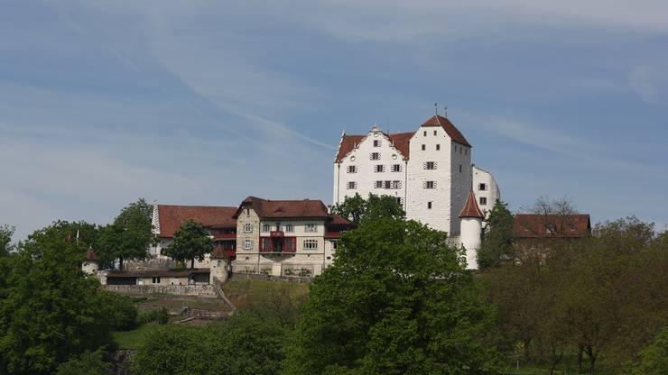 Schloss Wildegg (AG)
