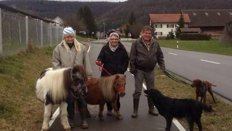 Astrid Wuillemin (l.), Esther Lötscher und Oscar Meier auf dem Spaziergang in Remigen. ZVG
