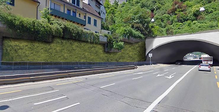 Statt wie früher Betonelemente, dienen jetzt Efeu und wilde Reben als Schallschutz. Sie führen das Grün des Schlossbergs bis zum Schulhausplatz.