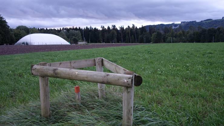 Das künftige Fussballareal Tägerhard Das hölzerne Dreieck ist ein Messpunkt, mit dem die Erdbewegungen in der aufgefüllten Kiesgrube kontrolliert werden. Foto Dieter Minder.JPG