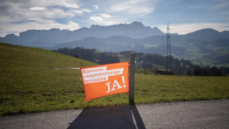 Ikone eines Abstimmungskampfs: In der ganzen Schweiz hingen die Fahnen der Initiativbefürworter.