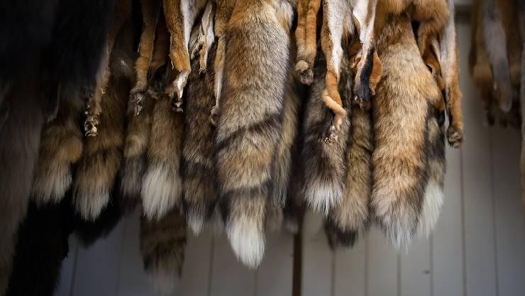 Die neue Verordnung zur Deklaration von Pelzen stösst bei Umweltschutzverbänden auf massive Kritik.