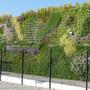 Die GreencityWall in Freiburg: Ressourceneinsparung durch begrünte Wände.