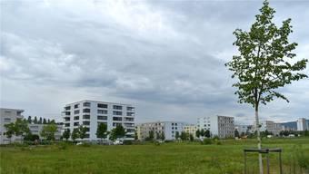 Nach dem Ja zur Umnutzung des Areals im Gebiet Wurmisweg-West ist es nun das Ziel der Gemeinde, 2020 einen Gestaltungsplan vorzulegen.