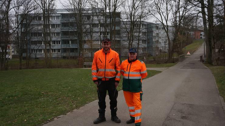 Von der Stadtgärtnerei Dietikon Patrick Bräm (links) und Thomas Weber - hinten die Eschen von denen einige am Samstag mit einem Sägekran gefällt werden sollten. Ein paar weitere werden in der Woche darauf mit Seilwinde und Motorsäge gefällt.