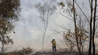 Trotz der gewaltigen Mengen an CO2, welche die jüngsten Buschbrände in Australien freigesetzt haben, rechnet die Regierung damit, ihre Klimaziele zu erreichen. (Archivbild)