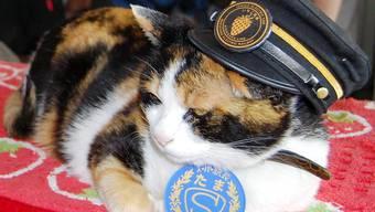 Japan trauert um Katze Tama.
