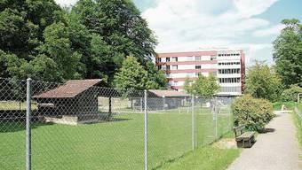 Der Hirschpark bei der «Oberen Mühle» kommt weg.