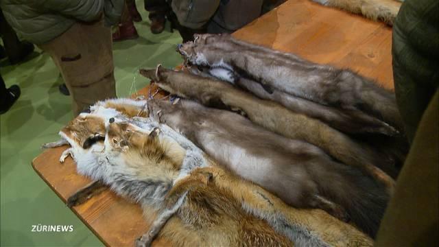 Mehrheit der Bevölkerung ist gegen die Jagd