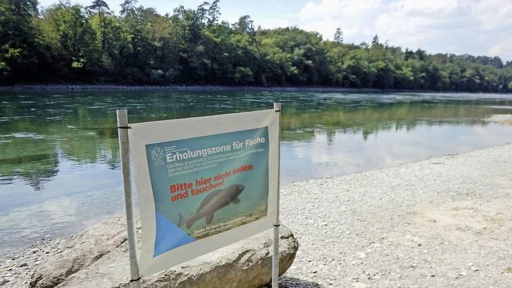 Plakate weisen auf die Erholungszone für die Fische hin.