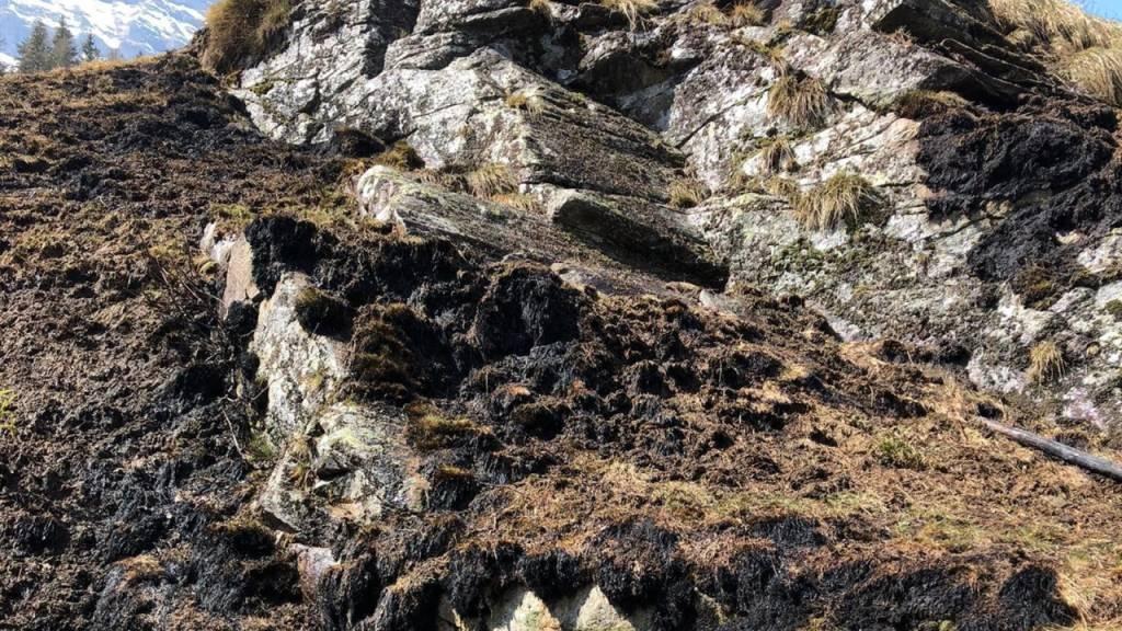 Der Flurbrand erfasste die Fläche eines Fussballfelds oberhalb von Rossa GR.