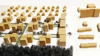 Das Modell einer möglichen Überbauung im Gebiet Lehmgrube in Sisseln