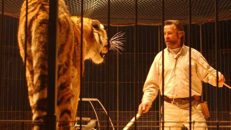 Bis 1994 war Strickler mit seinen Raubtieren in verschiedenen Zirkusunternehmen in Europa engagiert – auch für den Zirkus Knie. Das Foto stammt aus dem Jahre 2002, vor der Gründung des Raubtierparks 2003 reiste Strickler mit seinen Tieren durch die Schweiz.