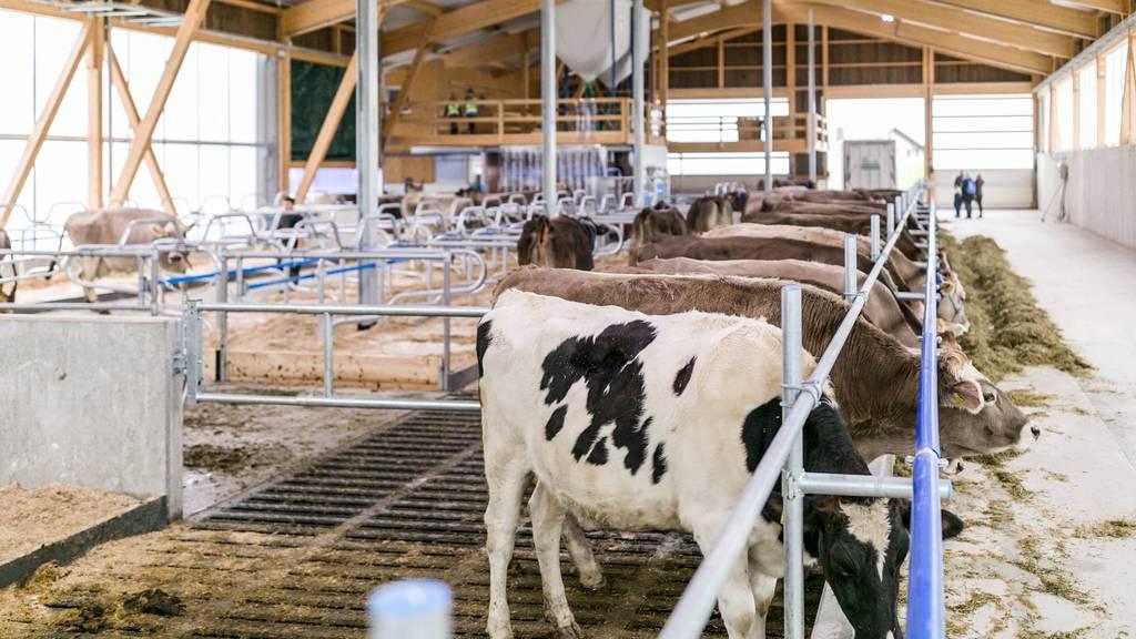 Die Schweiz hat immer weniger Bauern