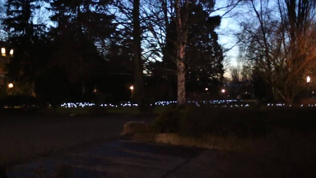 Frostlicht im Seepark Romanshorn