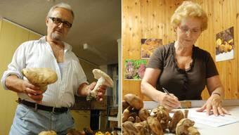 Guglielmo «Willy» und Verena Martinelli sind leidenschaftliche Pilzler.