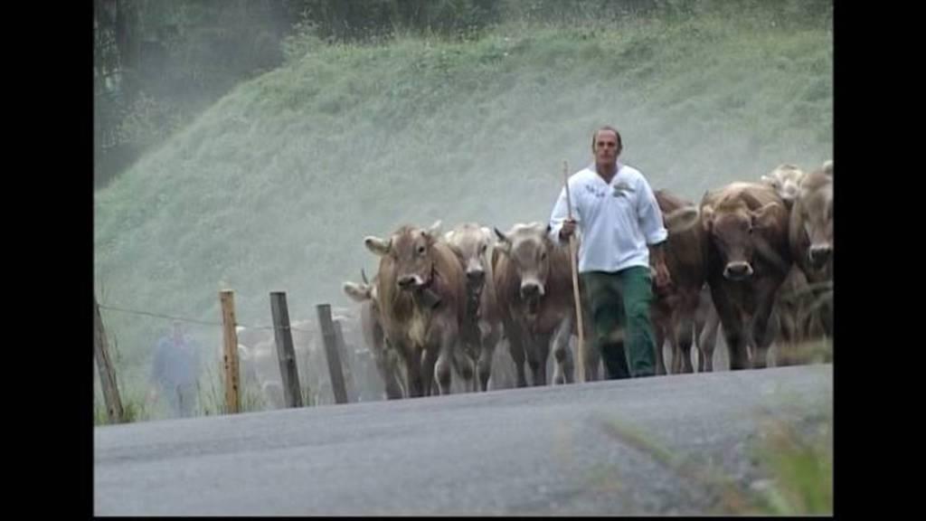 TeleZüri ziähts uf d'Alp: Teil 1 (2009)