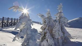 Prächtiges Winterwetter am Wochenende lockte Herr und Frau Schweizer ins Freie