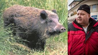 SVP-Grossrat Richard Plüss ist Revierförster und Jäger und ärgert sich über die Wildschweinschäden