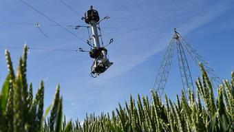 Zwischen vier 24 Meter hohen Masten hängt das Kernstück der Überwachungsanlage für das ETH-Agrarforschungsfeld: ein Sensorkopf mit Kameras, Laser-Messtechnik und Spektrometern.