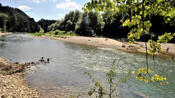 Seit Juli 2019 darf die Aareinsel des Naturreservats Grien nicht mehr betreten werden, die Kantonspolizei Solothurn hat die Kontrollen intensiviert.