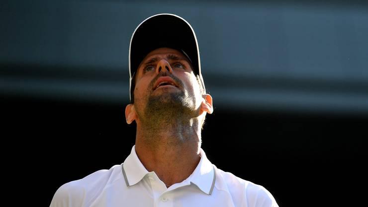 Novak Djokovic steht in der Causa Gimelstob weiter im Gegenwind.