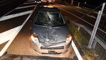 Glück im Unglück hatten die beiden Autoinsassen nach einer Frontalkollision mit einem Hirsch.