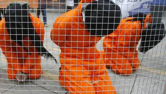 Kritiker demonstrieren gegen das umstrittene US-Gefangenelagers Guantanamo auf Kuba (Archiv)