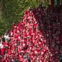 Die Fans von Union Berlin verfolgen das Geschehen angespannt