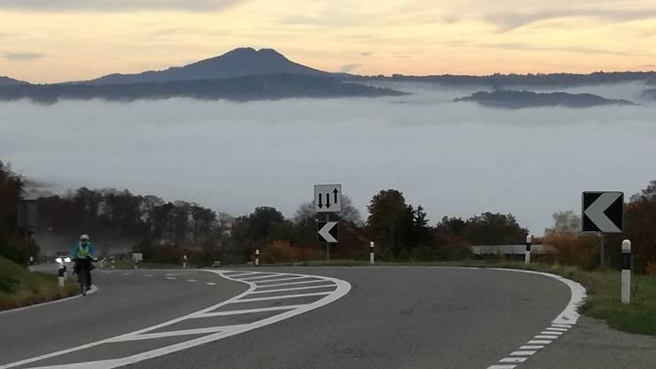 Blick vom Bözberg (Vierlinden) auf das Nebelmeer mit Lägern. Unter dem Nebel liegt Brugg.