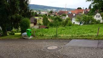 Mann bei Arbeiten an Schacht in Münchwilen von Auto erfasst und tödlich verletzt