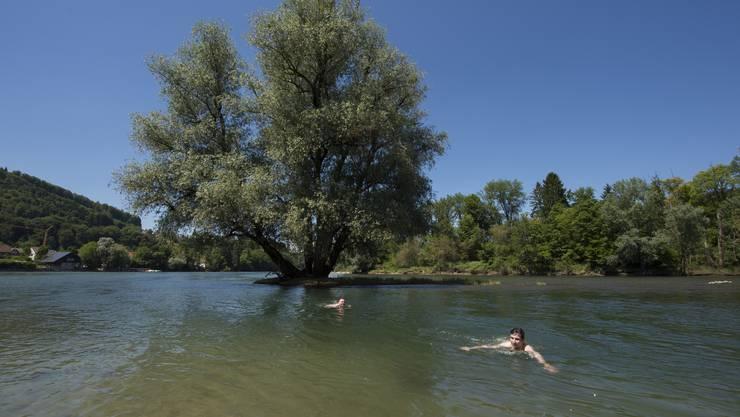 Wer vor dem Schwimmen mehr wissen will,  klickt das Portal EnVIS an.