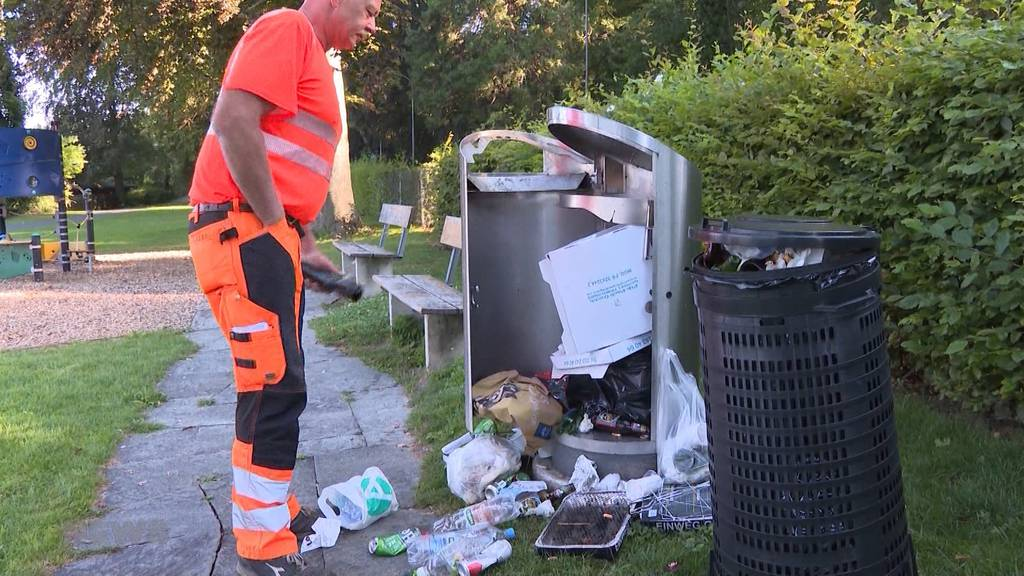 Abfallsünder suchen den Thunersee heim