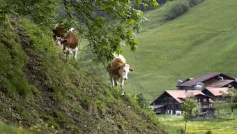 Regional und nachhaltig: Die Initiative zur Ernährungssouveränität will einen Kurswechsel für Bauern. (Archivbild)