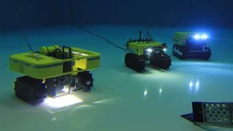 Unterwasserfahrzeuge im Test: «Tramper» soll ein Jahr lang nahe Spitzbergen unterwegs sein und ein Sauerstoffprofil erstellen.Unterwasserfahrzeug Lars Grübner