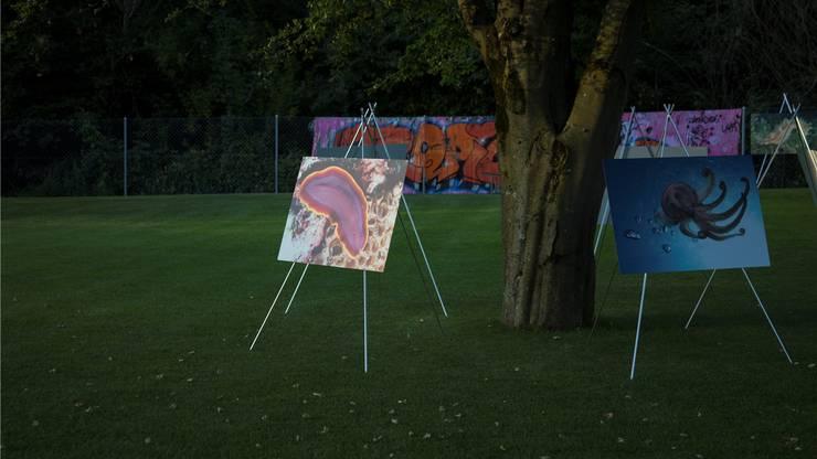 100 Exponate gab es an der Ausstellung zu sehen - alle Bilder konnte man für den guten Zweck kaufen.