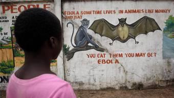 Eine Liberianerin schaut in Monrovia auf eine Wand, die vor dem Verzehr von Buschfleisch warnt. Das Land hat Ebola mittlerweile überwunden.KEYSTONE/AHMED JALLANZO