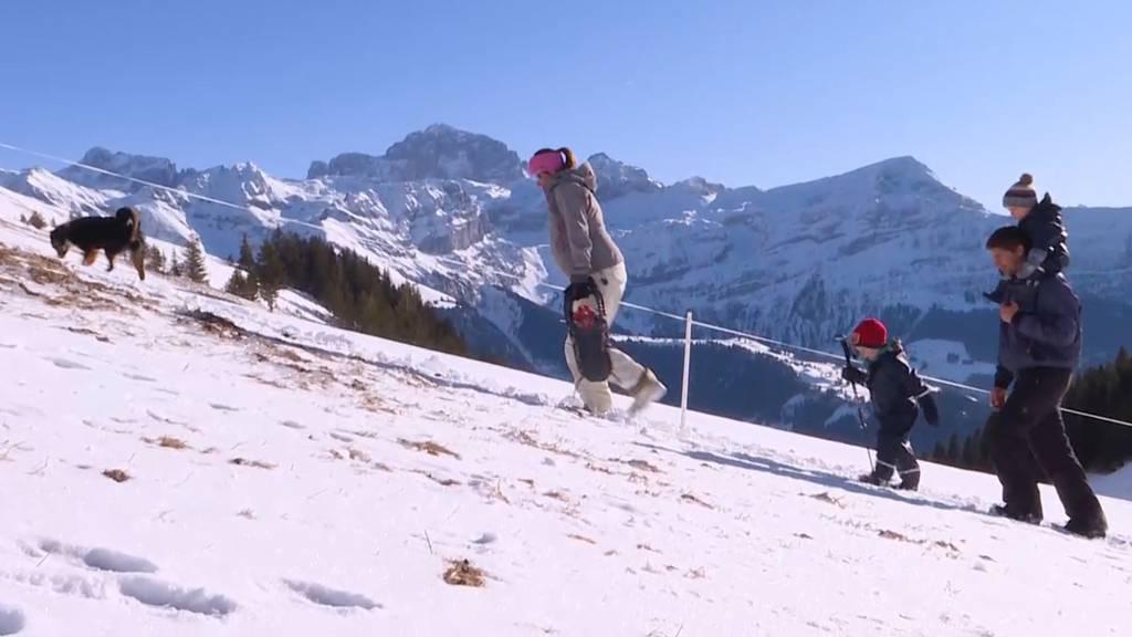 Familie im Schnee: Isoliert in Ruogig