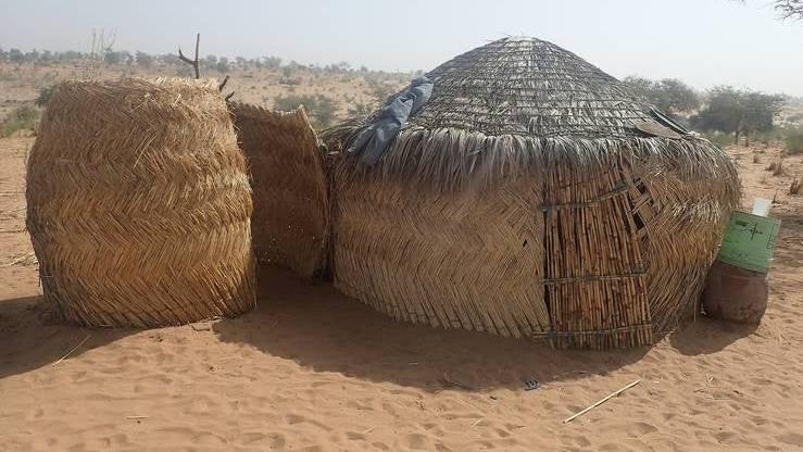 Schwerer Anschlag in Niger: Mehr als 50 Tote