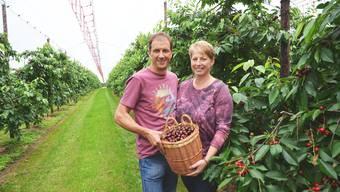 Paul und Ruth Müller-Villiger wurden für ihre hervorragenden Kirschen vom Verband Aargauer Obstproduzenten ausgezeichnet.