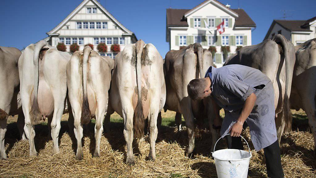 In der Schweiz ist in den vergangenen zwanzig Jahren der Anteil der Selbstständigerwerbenden leicht zurückgegangen. Am meisten Selbstständige gibt es bei den Bauern und in der Fortstwirtschaft. (Archiv)