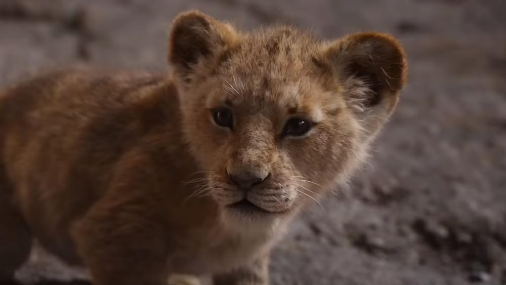 Neuer Trailer zu König der Löwen