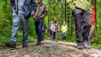 Die Jurapark-Natura-Trails führen durch viele Buchenwälder. Jetzt im Frühling sind sie besonders lauschig. Sandra Ardizzone