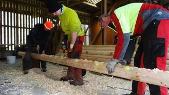 Die Stämme für den Aargauer Holzwettkampf werden präpariert