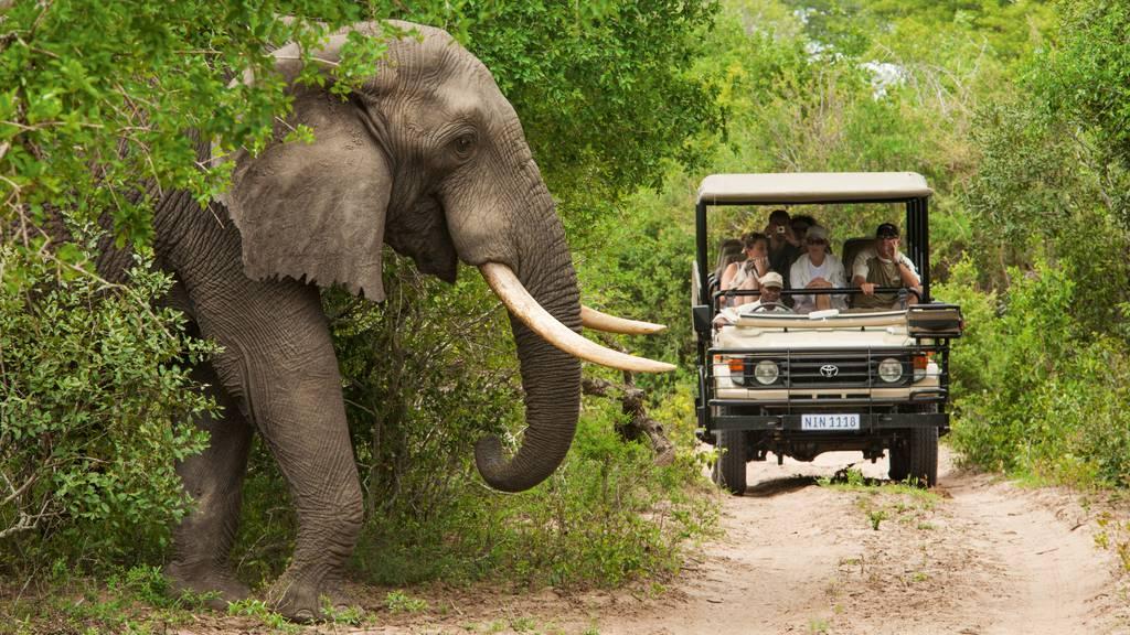 Erfahre alles über Südafrika und gewinne 500.- für deine nächste Reise