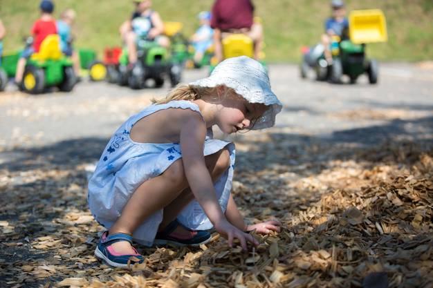 In den Holzschnitzeln konnten die Kinder nach Goldstücken suchen