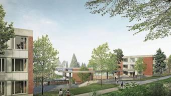 Von Bäumen umgebene Backsteingebäude: Die zwei neuen Häuser in der Schulanlage Wolfsmatt werden parallel zur Vogelaustrasse zu liegen kommen.